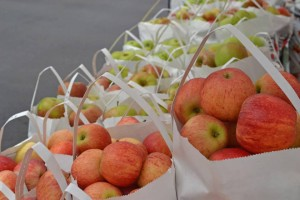 NC-Pre-Picked-Apples