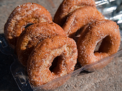 apple cider donuts hendersonville nc