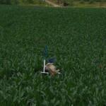 Cutting Corn Maze
