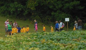 Children Touring Pumpkin Patch with Tour Guide